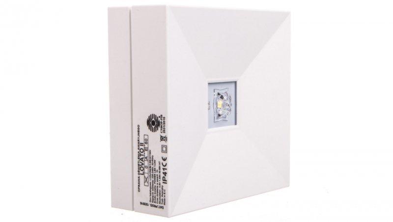 Oprawa awaryjna LOVATO II 3W 1H jednozadaniowa (opt. uniwersalna) autotest biała LV2U/3W/B/1/SE/AT/WH