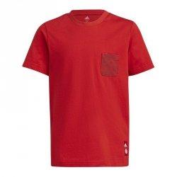 Koszulka adidas FC Bayern Kids Tee GR0678 czarny 152 cm