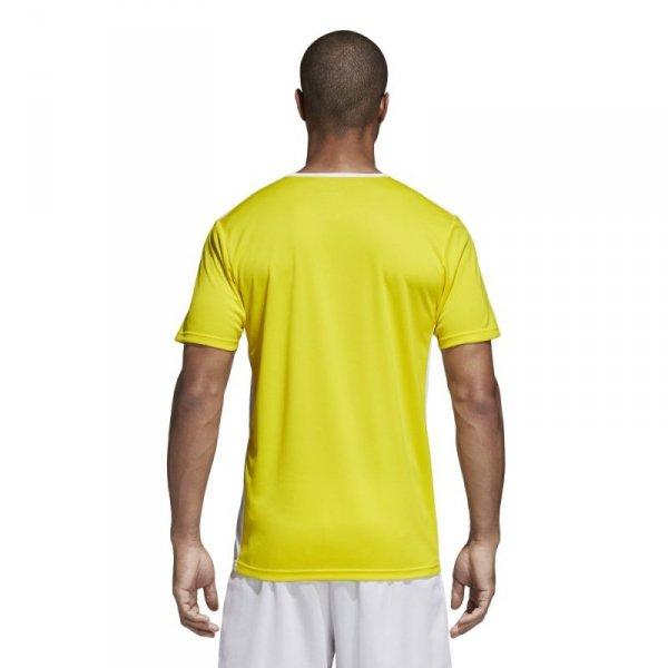 Koszulka adidas Entrada 18 JSY CD8390 żółty L