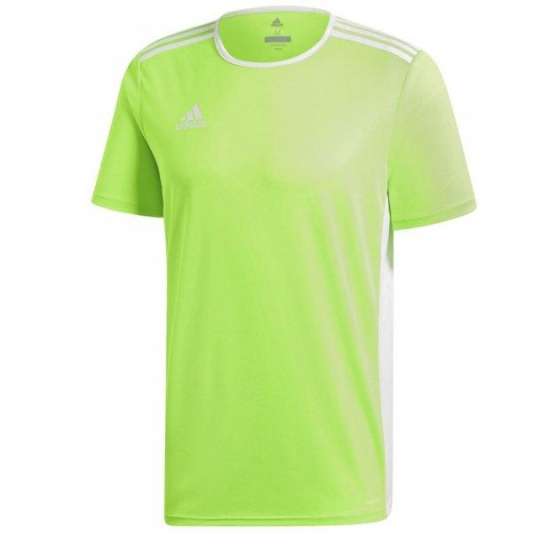 Koszulka adidas Entrada 18 JSY CE9758 zielony S