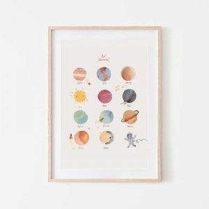 Plakat Planety średni - Mushie