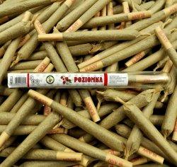 Joint CBD Poziomka