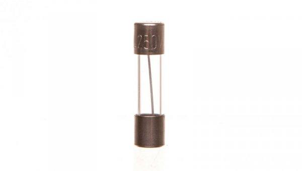 Wkładka aparatowa 5x20 mm 10A T L520TK10-000 /10szt./