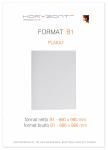 plakat B1, druk pełnokolorowy jednostronny 4+0, na papierze kredowym, 130 g, 10 sztuk