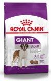 Royal Canin Giant Adult karma sucha dla psów dorosłych, od 18/24 miesiąca życia, ras olbrzymich 15kg