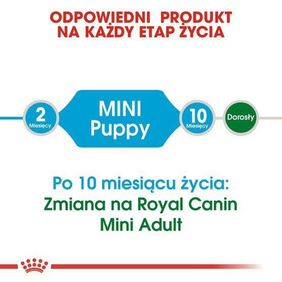 Royal Canin Mini Puppy karma sucha dla szczeniąt, od 2 do 10 miesiąca życia, ras małych 2kg