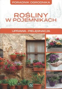 Rośliny w pojemnikach poradnik ogrodnika