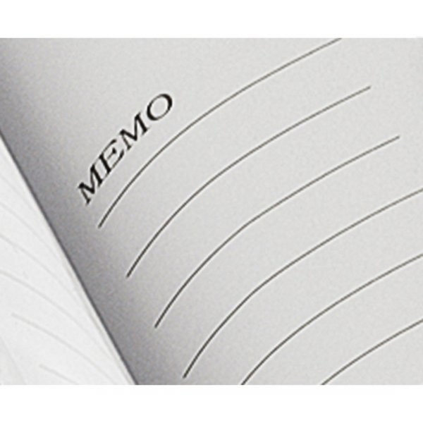 Album 10x15/200 memo, Łabędzie, czarny