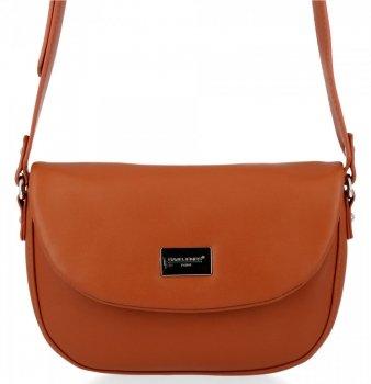 Univerzálna dámska taška na posol pre každý deŘ David Jones Ryšavka