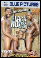 DVD-BLACK RODS