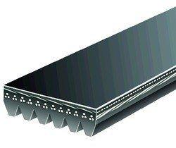 Pasek wielorowkowy 6PK2225 C2500 1997-2000 5.0 L. 5.7 L.