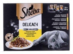 Sheba Del in Jelly Smaki Drobiowe 12x85g