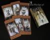 Tarot The Labirynth - talia kart tarota, projekt: Luis Royo