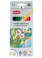 Kredki ołówkowe trójkątne 12 kolorów TOMA