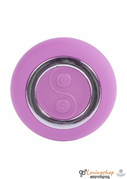 Remoted controller egg 0.1 USB Purple