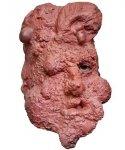 Maska lateksowa - Człowiek skała