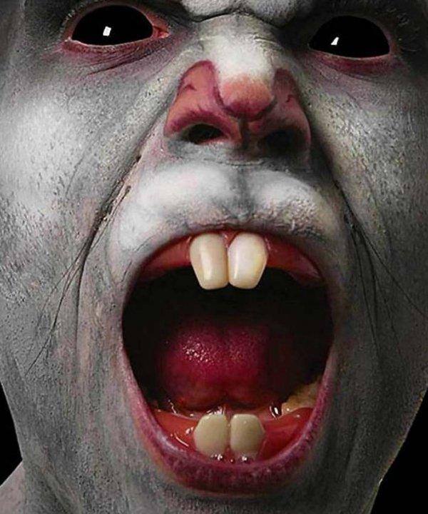Sztuczne zęby - Szczur