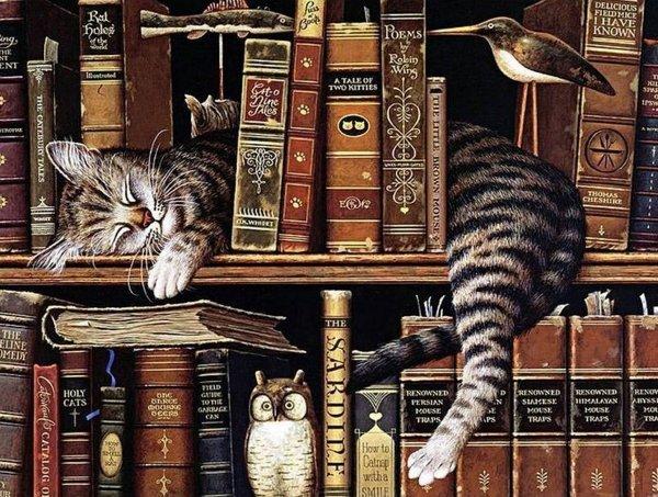 Haft Diamentowy Kot Bibliotekarz 45x58 cm K