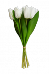 Tulipan bukiet z gumowym liściem 7 szt. MIX - 20YW030