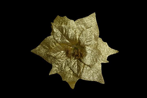Poinsecja wyrobowa brokatowa 22 cm złota