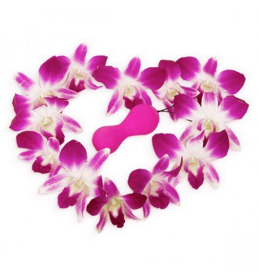 Gvibe Gballs App Petal Rose