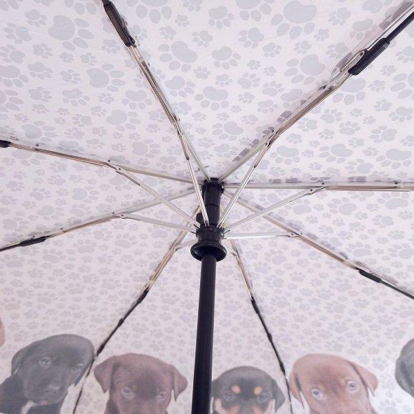 Szczeniaczki - parasolka składana full-auto Von Lilienfeld