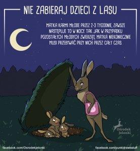 Nie zabieraj dzieci z lasu #2