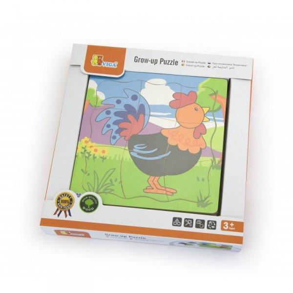 Puzzle Drewniane Układanka Jak Rośnie Kogucik 4 Obrazki 21 Elementów - Viga  Toys