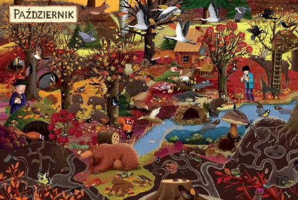 Książeczka Rok w lesie