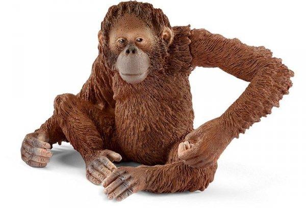 Schleich Orangutan samica