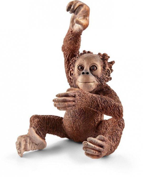 Schleich Młody orangutan