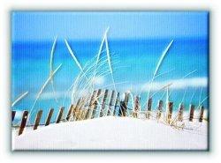 Lake sand Dunes - Obraz na płótnie