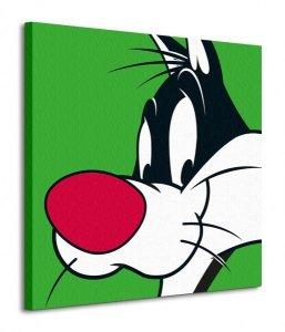 Looney Tunes (Sylvester) - Obraz na płótnie