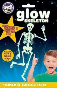 Naklejka szkielet człowieka
