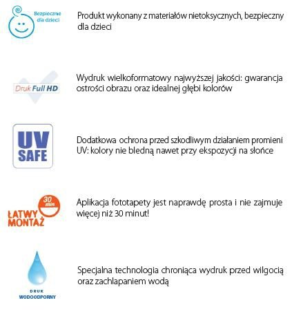 Fototapeta Statki Rakiety Kosmiczne 13887