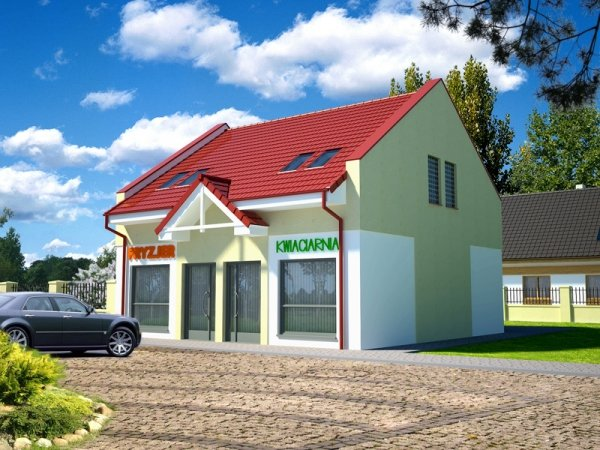 Projekt budynku handlowo - usługowego U51 (z dwoma lokaliami handlowo - usługowymi)
