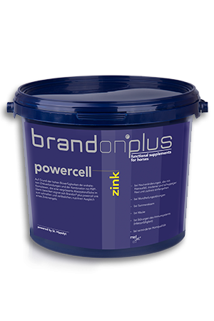 Powercell Cynk 3 kg Brandon PLUS