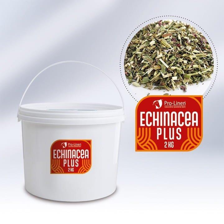 ECHINACEA PLUS  Pro-linen