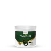 HorseLinePRO Boswellia Serrata 500g proszek