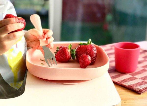 Silikonowy talerzyk z przyssawką pink