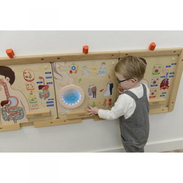 MASTERKIDZ Tablica Edukacyjna Cykl Życia Człowieka