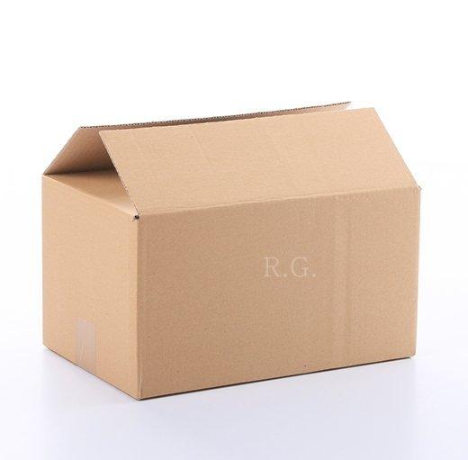200x Faltkarton Karton 300x200x160