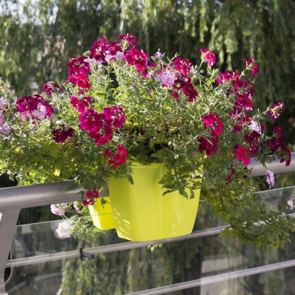 Blumenkasten Balkonkasten crown 240 lime