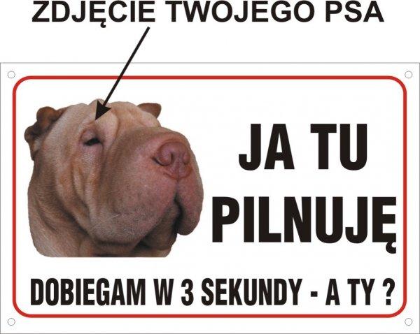 Zdjęcie Twojego psa- Ja tu pilnuję