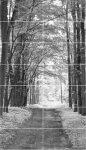 Tubądzin All in White 2 Obraz 14-elementowy ( 1198x2098)