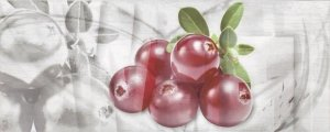 Ceramika Końskie Napoli Fruit 1 Inserto 20x50