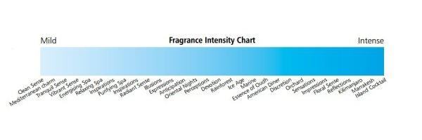 paleta intensywności zapachów