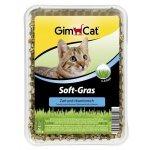 Gimcat Trawa Soft-Gras dla kota 100gr