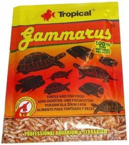 Tropical Gammarus 12 gram