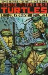 TEENAGE MUTANT NINJA TURTLES VOL 01 CHANGE IS CONSTANT SC (OLD EDITION)